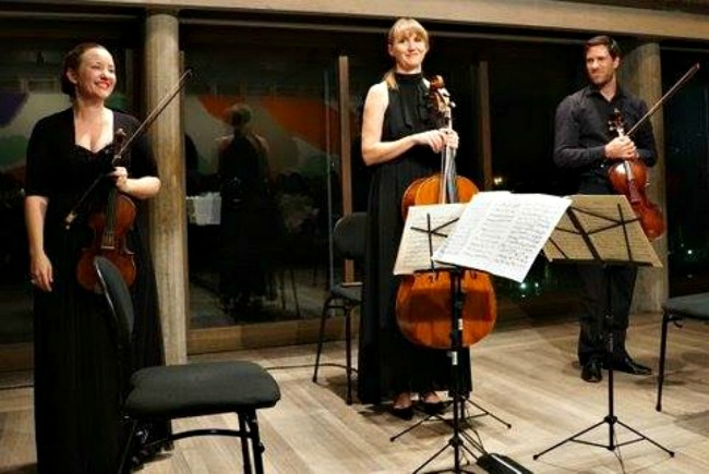 Skye McIntosh-Violin, Anthea Cottee-cello and James Eccles-Viola