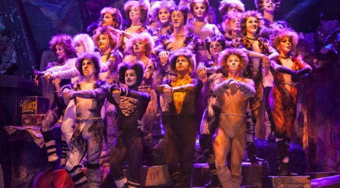 CATS THE MUSICAL @ THE REGENT THEATRE MELBOURNE