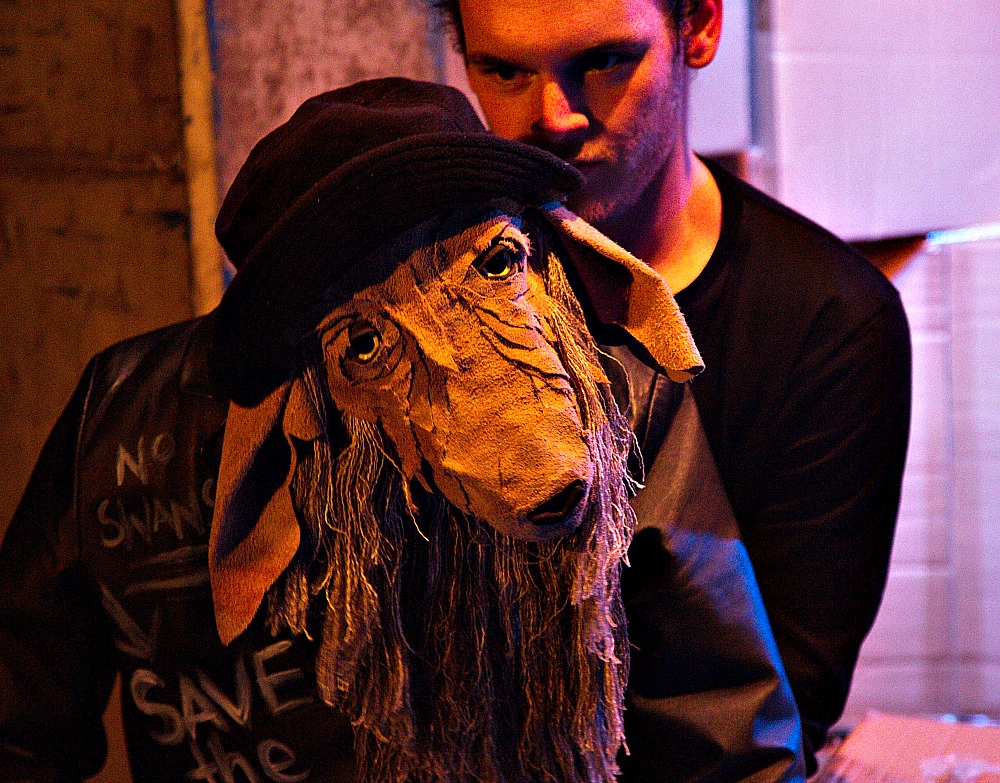 Above- Jesse Northam with puppet. Featured- Murray Lambert and Sam Flack. Photos by Alinta Haydock-Burton.