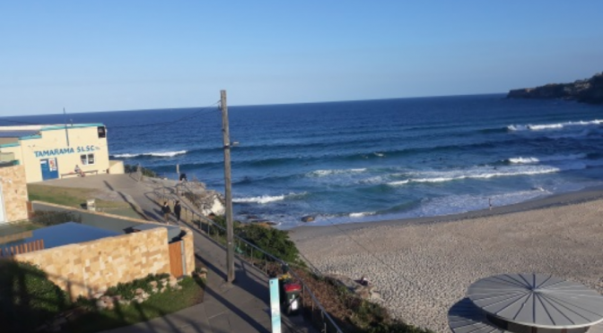 ART with a VIEW: RAISING FUNDS FOR AN ICONIC SLSC BUILDING