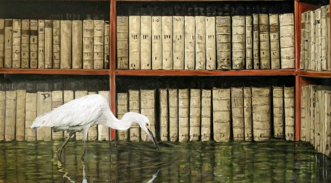 MODICUS – THE FLOODED LIBRARY. NEW WORKS FROM JAMES McGRATH
