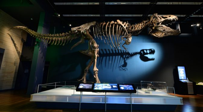 AUSTRALIAN MUSEUM OFFICIALLY REOPENS TO THE PUBLIC