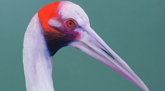 TRAFFIC JAM GALLERIES : THE BIRDS