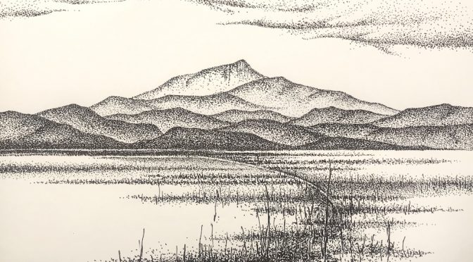 DRAWING AT HOME WITH DAVID MIDDLEBROOK : AN ONLINE WORKSHOP